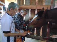 Поездка на ферму «Коза-Дереза»